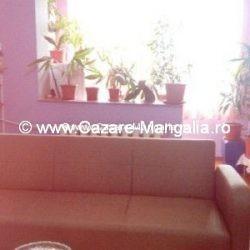 Cazare Apartament Callatis Mangalia 0