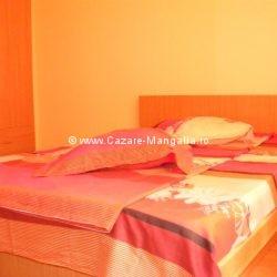 Cazare Mangalia - Apartament Viorica Mangalia - Camera 1